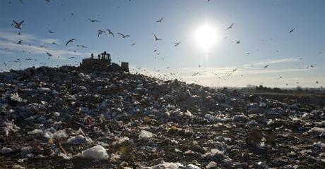 固体废物与飞灰检测